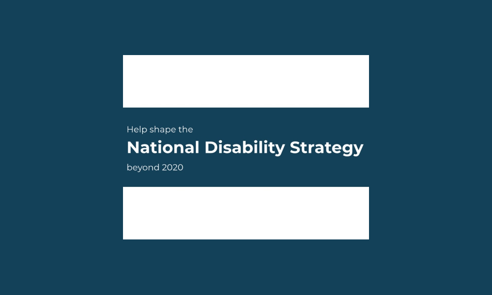 National_disability_strategy FINAL